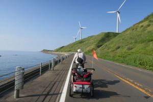 Large Windfarm