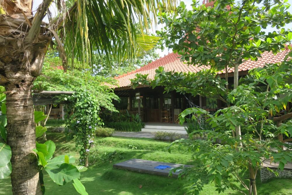 Tropical Kindergarten