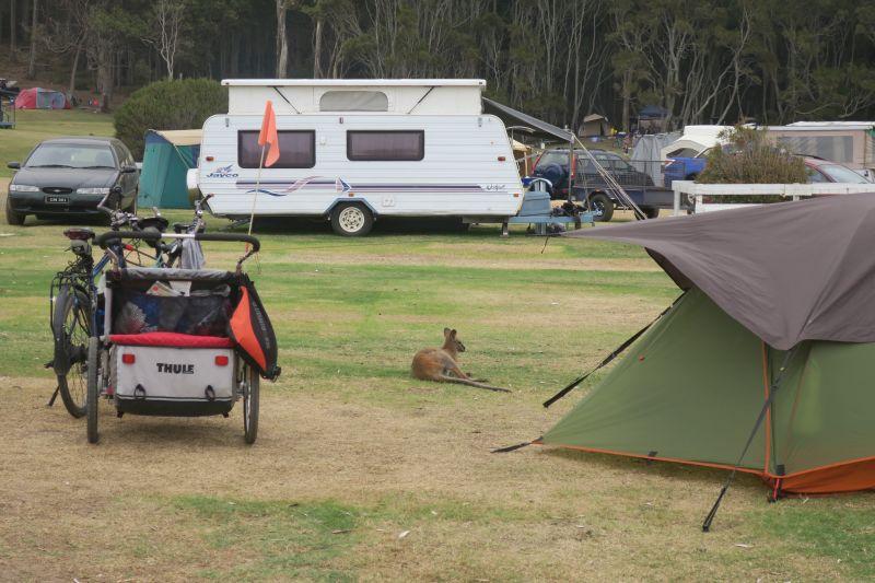 Kangaroo Camp